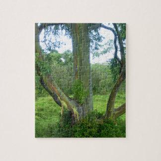 Regenbogen-Baum Puzzle