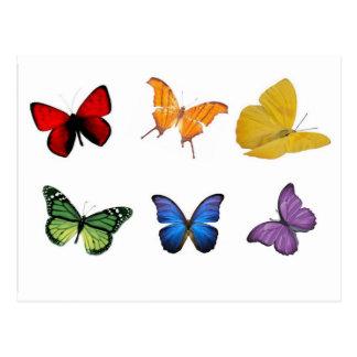 Regenbogen der Schmetterlinge Postkarte