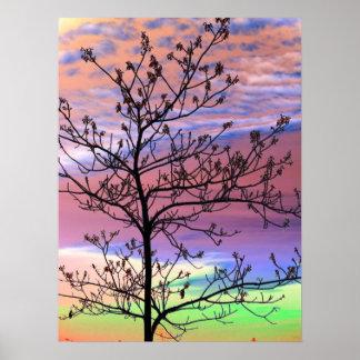 Regenbogen-Himmel-unfruchtbarer Baum Plakatdrucke