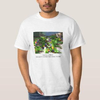 Regenbogen Lorikeets T-Shirt