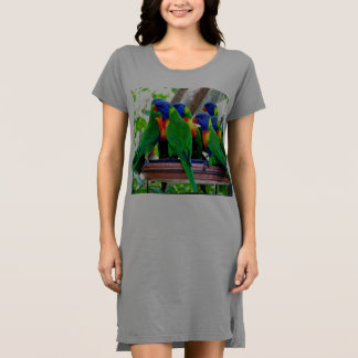 Regenbogen Lorikeets T - Shirtkleid/Nightie Kleid