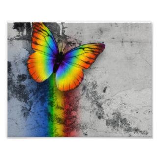 Regenbogen-Schmetterlings-grauer schwarzer Fotodruck