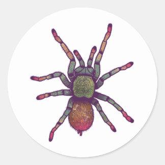 Regenbogen-Spinnen-Aufkleber Runder Aufkleber