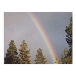 Regenbogenkarte Postkarte