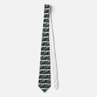 Regentropfen auf Blumenkohl-Blätter Krawatte