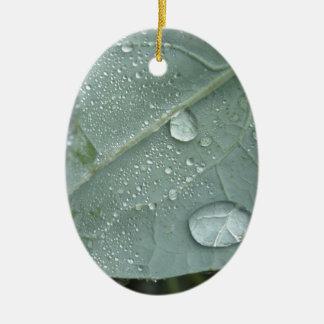Regentropfen auf Blumenkohl-Blätter Ovales Keramik Ornament