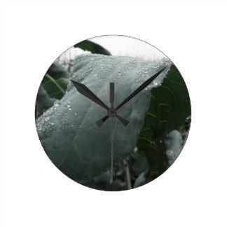 Regentropfen auf Blumenkohl-Blätter Runde Wanduhr