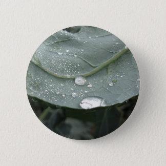 Regentropfen auf Blumenkohl-Blätter Runder Button 5,1 Cm