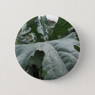 Regentropfen auf Blumenkohl-Blätter Runder Button 5,7 Cm