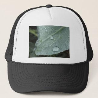 Regentropfen auf Blumenkohl-Blätter Truckerkappe