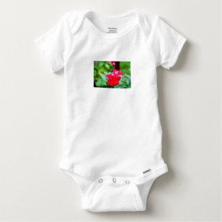 REGENTROPFEN AUF ROSA BLUME QUEENSLAND AUSTRALIEN BABY STRAMPLER