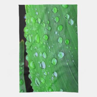 Regentropfen-Nahaufnahme, Spacey Grün Küchenhandtücher