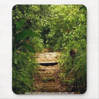 Regenwald-Hinterauflage Mousepad