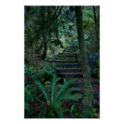 Regenwald-Plakat Poster