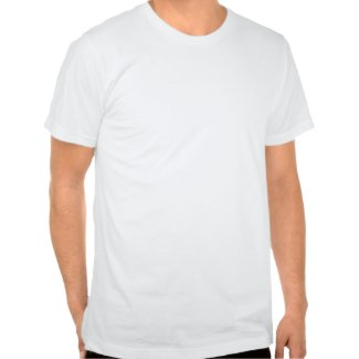 Region Mitte - Mitteldeutschland | Basic American Apparel T-Shirt (weiß)