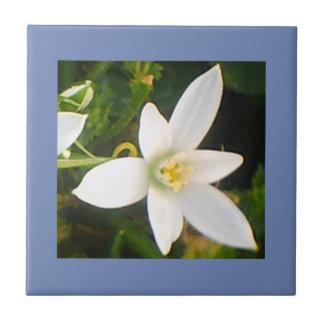 Regnerischer Frühlings-weiße blühende Keramikfliese