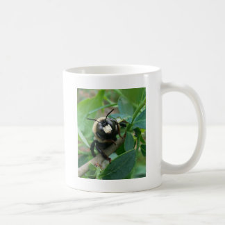Regnerischer Tagesbiene Kaffeetasse