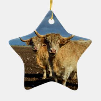 Rehbraune Hochland-Kühe, Keramik Ornament