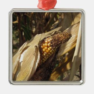 Reif und bereit, Kornähre zu ernten Quadratisches Silberfarbenes Ornament