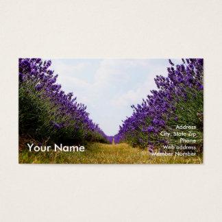 Reihe des Lavendel-Geschäfts Card2 Visitenkarte