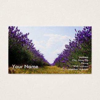 Reihe des Lavendel-Geschäfts Card_A Visitenkarte