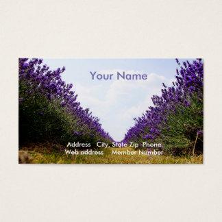 Reihe des Lavendels Visitenkarte