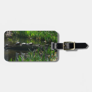 Reihe Schildkröte-des grünen Natur-Fotos Kofferanhänger