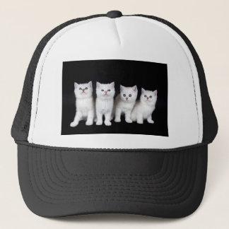 Reihe von vier weißen Kätzchen auf schwarzem Truckerkappe