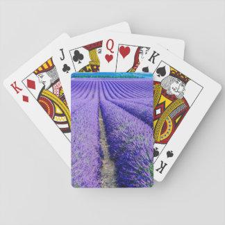 Reihen des Lavendels, Provence, Frankreich Spielkarten