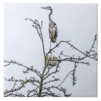 Reiher auf einer Baum-Keramikfliese Fliese