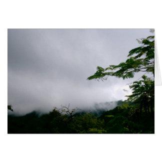 Reiher im Dschungel Karte