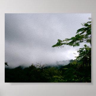 Reiher über dem Dschungel Poster