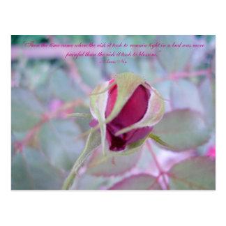 Reine Eleganz-Postkarte Postkarte