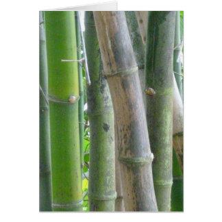 Reiner Bambus Karte