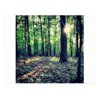 Reines Entspannung mit Natur Postkarte