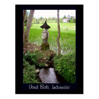 Reis-Paddy, Tempel, Ubud Bali, Indonesien Postkarte