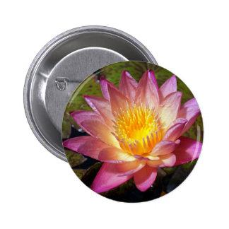 Reizende rosa Wasser-Lilie Runder Button 5,1 Cm