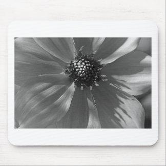 Reizende Schwarzweiss-Blume Mauspad