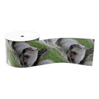 Reizender Capybara Ripsband
