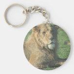 Reizender Löwe Schlüsselanhänger