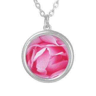 Reizender Rosenkönig der Rosen-roten Blumenblätter Versilberte Kette