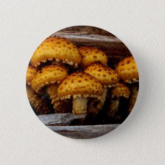 Reizendes Bündel wilde Pilze Runder Button 5,7 Cm