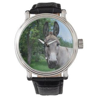 Reizendes Esel-Porträt Uhr