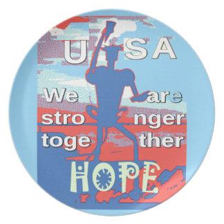Reizendes Hillary Blau 2016 USA sind wir stärkeres Teller
