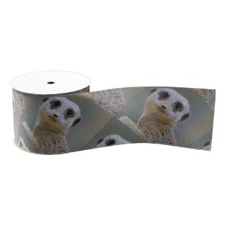 Reizendes meerkat ripsband