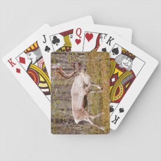 Ren, das in Wald geht Spielkarten