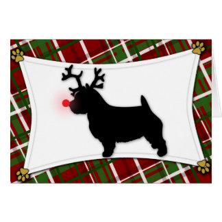 Ren-Weihnachtskarte Norwichs Terrier Karte