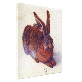 Renaissance-Kunst, junger Hase durch Albrecht Galerie Falt Leinwand