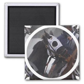 Rennpferd-quadratischer Magnet
