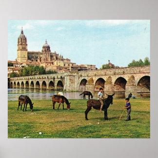Replik Vintages Spanien, Salamanca, Kathedrale Poster
